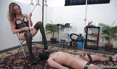 Les massage prono xxx équidés